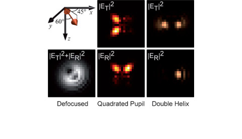 The role of molecular dipole orientation in single-molecule fluorescence microscopy and implications for super-resolution imaging